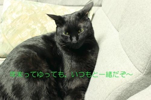 Img_1722_4